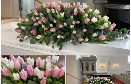 24 Tulipaner